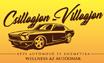 Csillogjon-Villogjon Autómosó és Autókozmetika